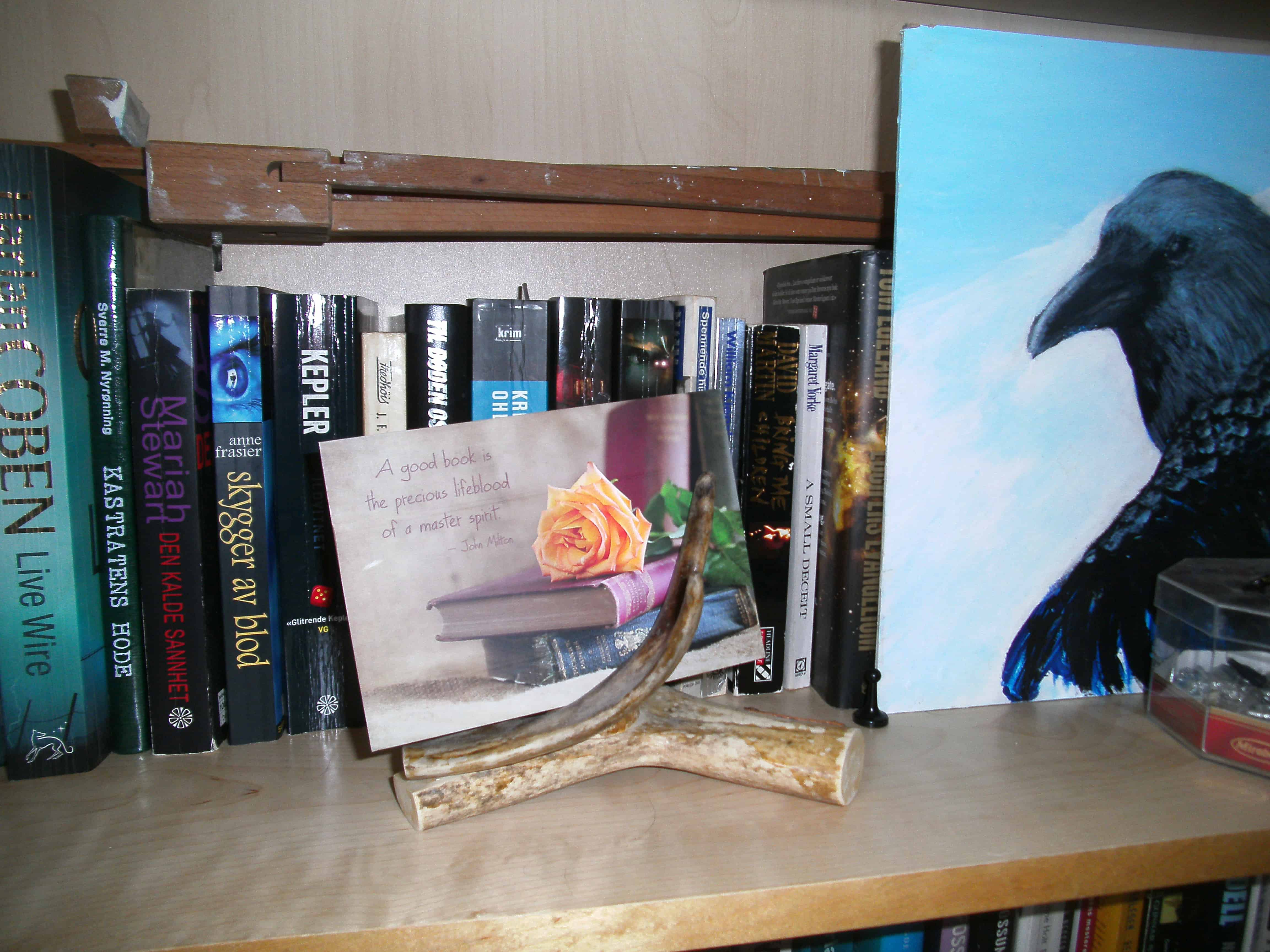 Book quote, books and rose by Janet McQueen, Canada