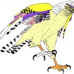 Coloring Strange Birds Will Be Free on Monday