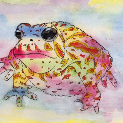 Toad - colourful amphibians by Linda Ursin