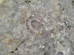 Petroglyphs Again