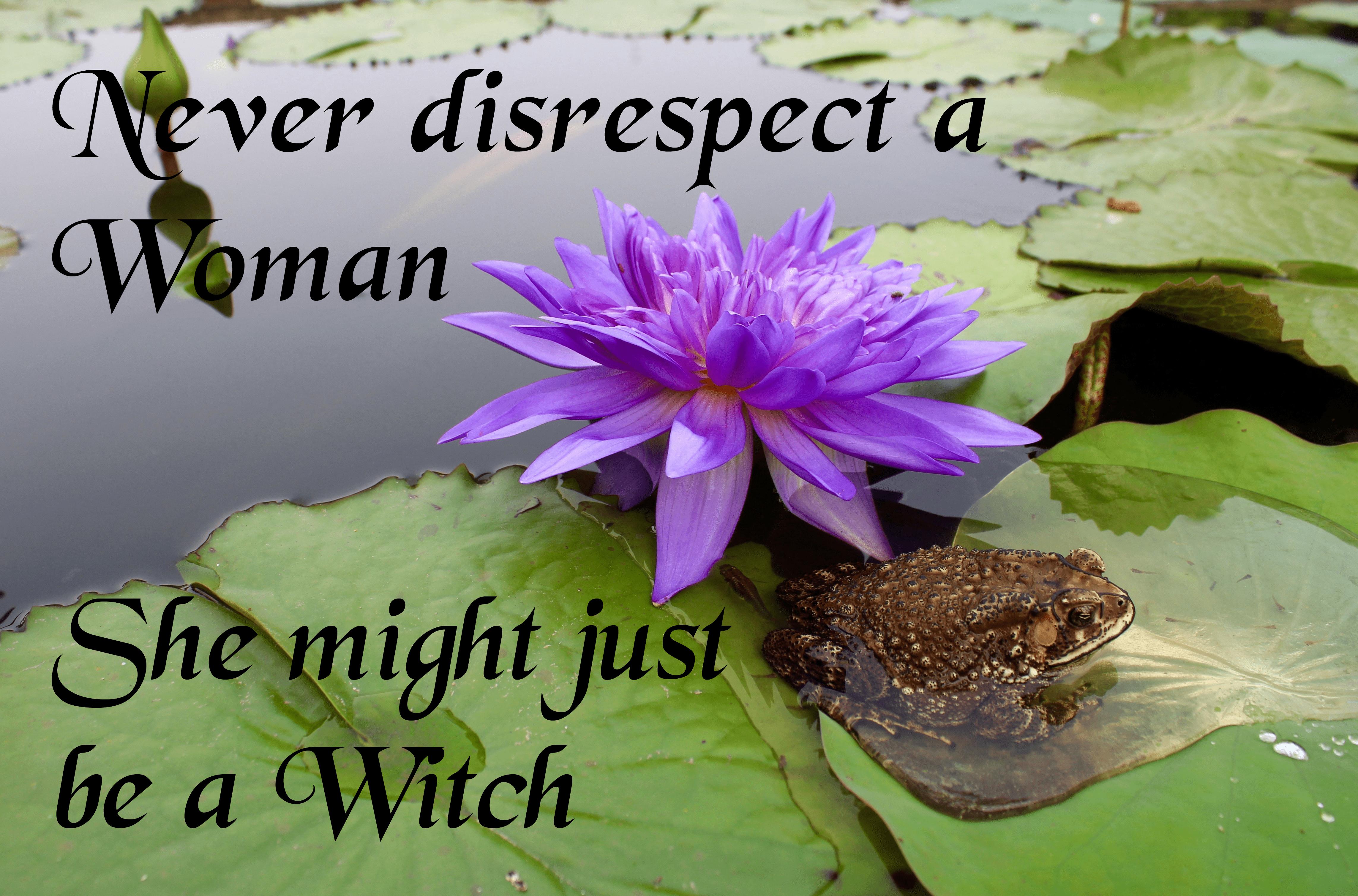 never disrespect a woman