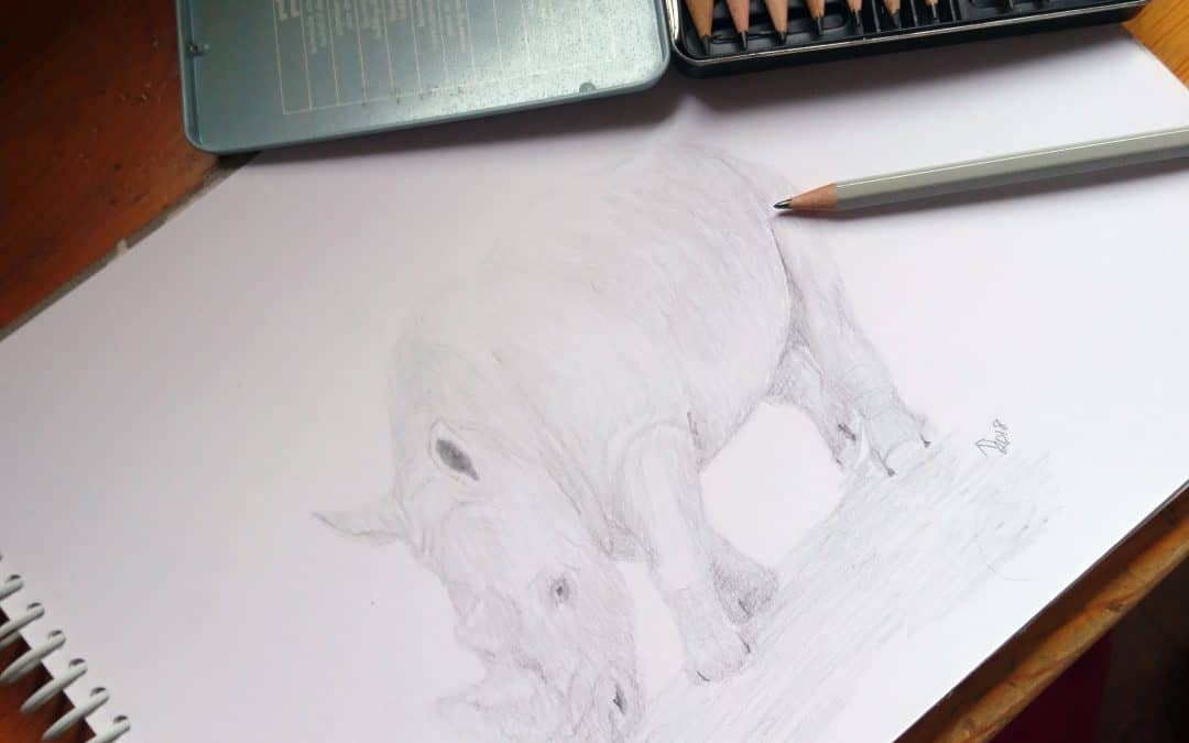 A Sketch as a Way to Celebrate World Rhino Day