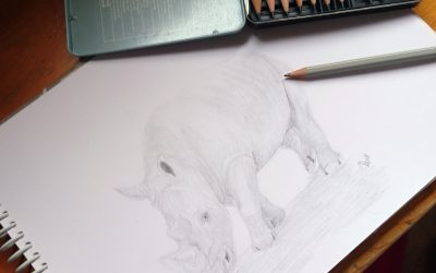 A Sketch as a Way to Celebrate World Rhino Day