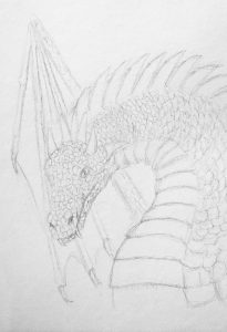 A pencil sketch of a Dragon