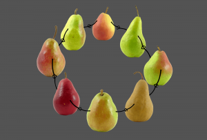 A group og pears holding hands