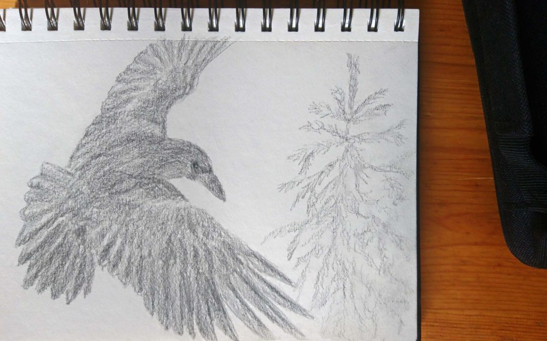 Work in progress (well painting series in progress) – a sketch of a Raven